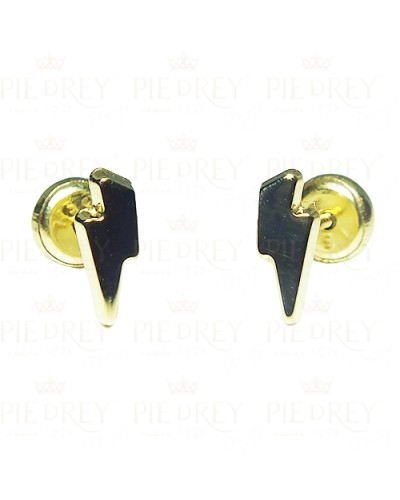 Earrings in Gold