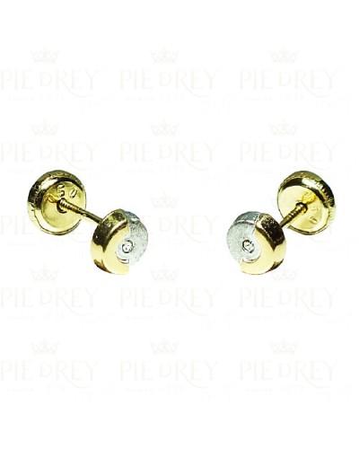 Earrings Circle Zircon in Gold